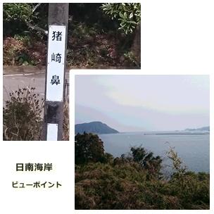 inohanazaki.jpg